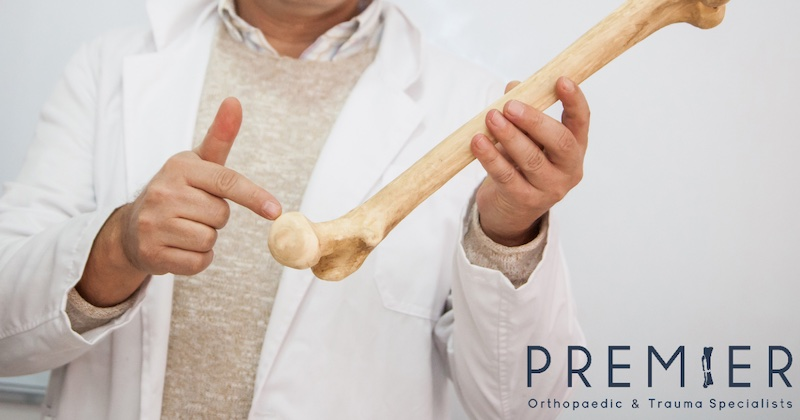 Doctor with a white coat on pointing to a leg bone